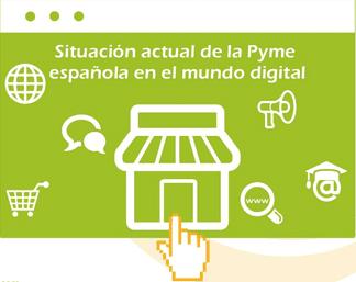 informe situación pyme websa100