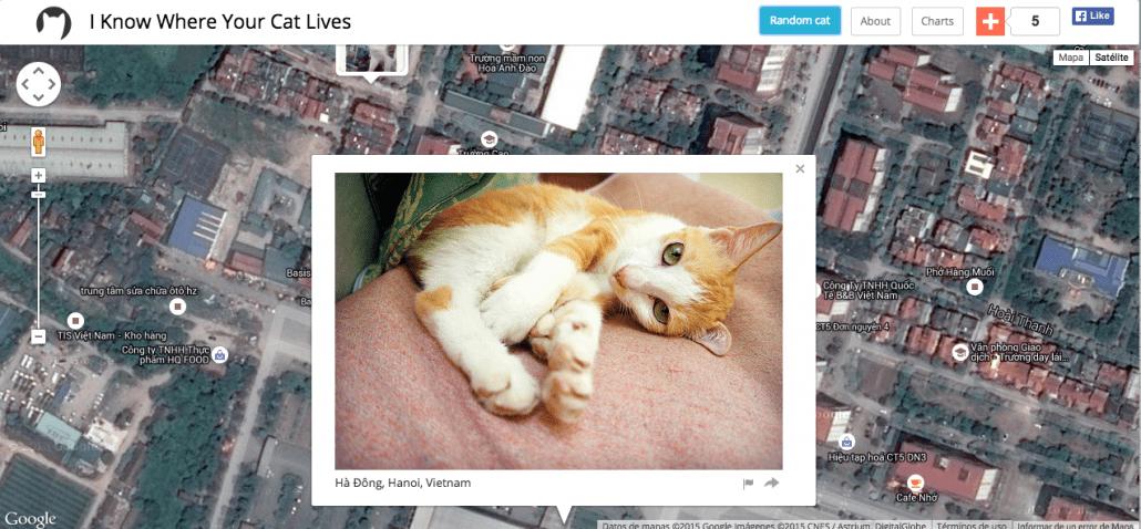 El mapa de gatos, un ejemplo de privacidad y geolocalización 2